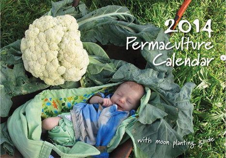 Date maker… planner… planting guide… stimulating pictures | Permaculture News | Scoop.it