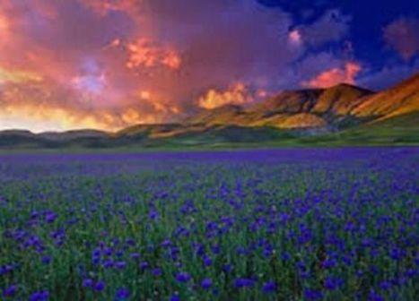 Idee Vacanza: Parco Nazionale dei Monti Sibillini | Le Marche un'altra Italia | Scoop.it