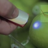 This pocket-sized molecular spectrometer tells you the chemical makeup of foods | SocialMedia | Scoop.it