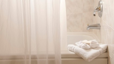 Why your shower curtain turns pink | Toxic Mould News | Scoop.it