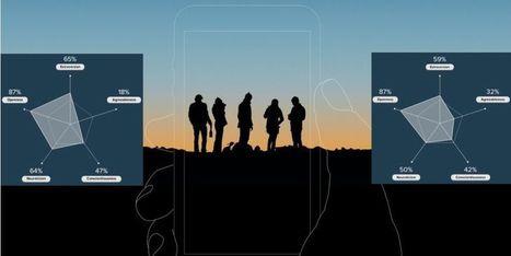 Facebook : quel est votre profil psychologique sur le réseau social ? | Une vie liquide... et du bouillon 2.0 ! | Scoop.it