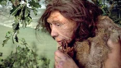 """Mens spreekt nog beetje neanderthaals"" | KAP-DeBrandtJ | Scoop.it"