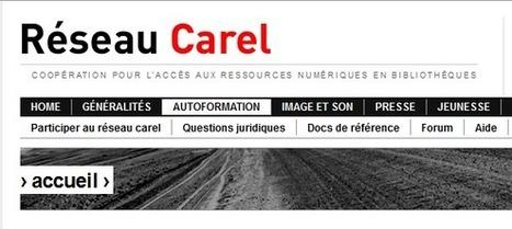 Réseau Carel | Coopération pour l'Accès aux Ressources Numériques en Bibliothèques | Cabinet de curiosités numériques | Scoop.it