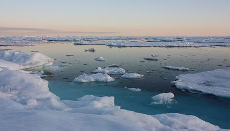 Pour sauver la banquise, devenez un habitant virtuel d'une île arctique - National Geographic | Développement durable et efficacité énergétique | Scoop.it