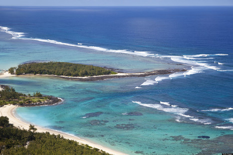 Saving the Last Coral Wilderness on Earth | ocngirl | Scoop.it