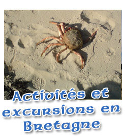 LE CIEL Bretagne : jeux pour enseigner et apprendre le français en ... | Le coin du FLE | Scoop.it