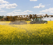 ROTHAMSTED MENTION: 2020 vision: tackling future arable challenges | BIOSCIENCE NEWS | Scoop.it