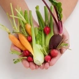 Casca, talo e sementes são ingredientes saudáveis e gostosos; veja como usá-los   Ygeia   Scoop.it
