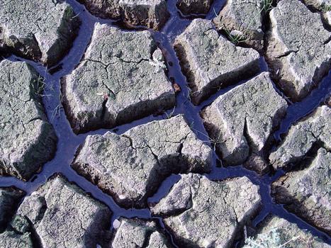 Australia to see worse drought thanks to intensifying El Niño | Oceania Hoy! Diario Nacional | Scoop.it
