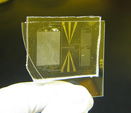New biochip diagnoses HIV/AIDS on the spot | Amazing Science | Scoop.it