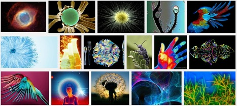 Amazing Science: Science Photography Postings | Amazing Science | Scoop.it