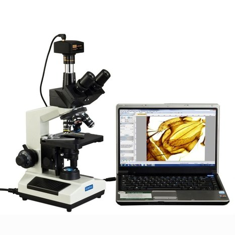 Trinocular Microscope - Best to Purchase, Uses and Benefits | Microscopes and Microscopy | Scoop.it