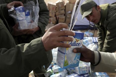 La surproduction laitière préoccupe le gouvernement, au point de le faire racheter les excédents - The Huffington Post | Agriculture et Alimentation méditerranéenne durable | Scoop.it