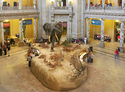 Museums take up crowdfunding | Sociofinancement | Scoop.it