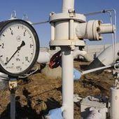 Crise du gaz : l'Europe, la Russie et l'Ukraine cherchent un terrain d'entente   Russie et géographie   Scoop.it