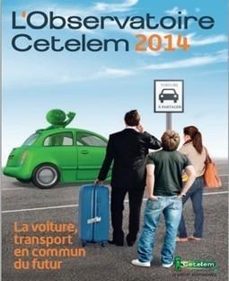 Etude de l'observatoire Cetelem sur l'automobile : la voiture, transport en commun du futur | Ressources pour la Technologie au College | Scoop.it