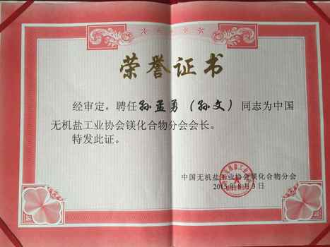 Congratulations Mr.Sun Take the Chair of Magnesium Salt Association   Events   Events and News   Magnesium oxide manufacturers in China   Scoop.it