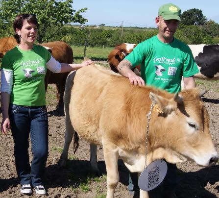 Le Télégramme -Gratt'Meuh :les vaches se prêtent au jeu des QR codes | QRdressCode | Scoop.it