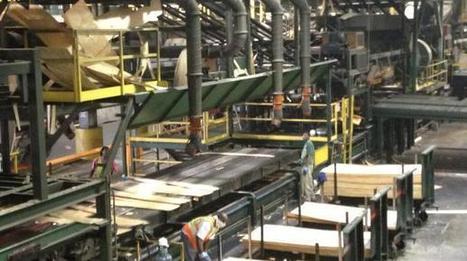 Pulp & Paper Sector News: Lumber mills buzzing again in Louisiana | Commercial Paper | Scoop.it