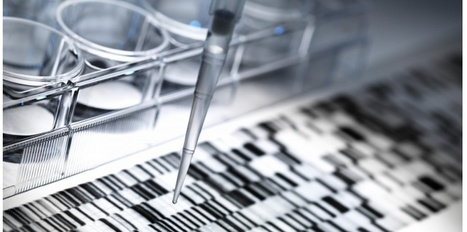 Autisme : un test de prédisposition est-il raisonnable ? | Veille scientifique Neuroscience | Scoop.it