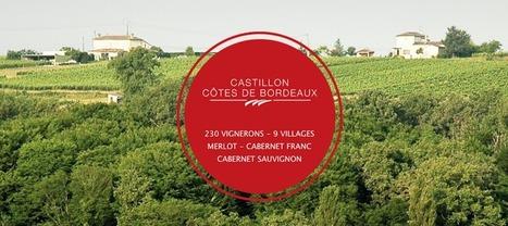 5-6 septembre : Portes ouvertes en Castillon Côtes de Bordeaux | Le vin quotidien | Scoop.it