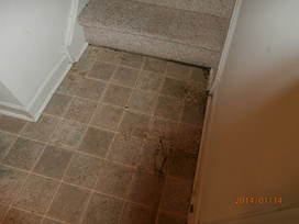 Water Extraction Services in Morrisville PA | Water Damage Restoration | Scoop.it