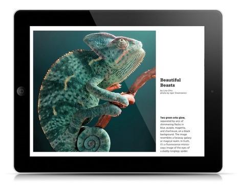 New Apps By Nervous Pixel Featured in Adobe DPS Gallery – | portfolio | Scoop.it