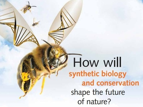Synthetic Biology. What Does it Mean for Agriculture? - Big Picture Agriculture | mikrobiologija | Scoop.it