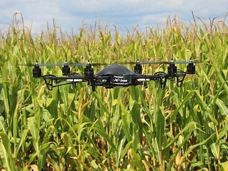 Top 15 emerging agriculture technologies that will change the world | Impact Lab | leapmind | Scoop.it