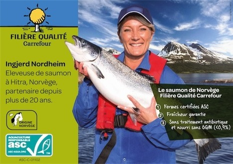 Carrefour first to introduce ASC certified salmon at fresh fish counter in France | Aquaculture Directory | Aquaculture Directory | Scoop.it