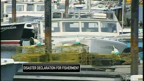Mass. officials push for federal aid for fishing industry - NECN | Fish Habitat | Scoop.it
