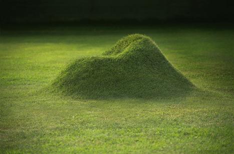 Du carton pour se faire un fauteuil d'herbe dans le jardin - La boite verte | Nature en Ville | Scoop.it