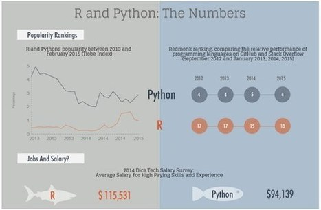 R vs Python for Data Science: The Winner is … | Management - Innovation -Technology and beyond | Scoop.it