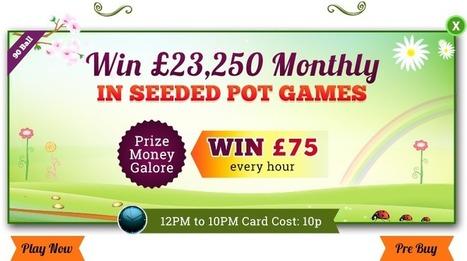 Play Super Seeded Pots and Grab Huge Prize Money at Harry's Bingo   UK Bingo Place   Scoop.it