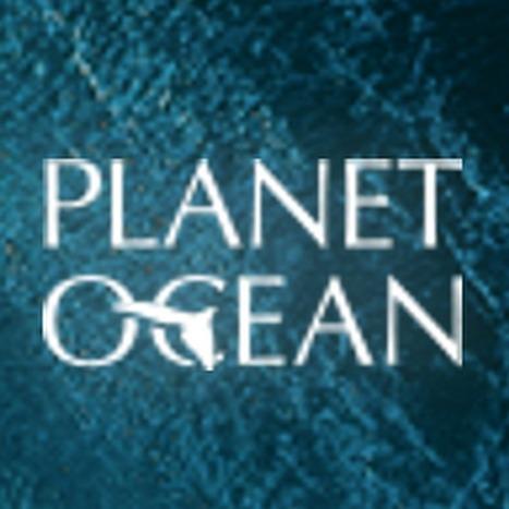 Planet Ocean - YouTube   Terapia Educativa   Scoop.it