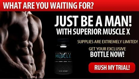 Free muscle building supplements for men's health and fitness | Best mens health and fitness products | Scoop.it