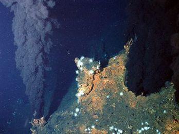 Le BRGM et l'Ifremer renforcent leur coopération sur les géosciences appliquées aux domaines marins et littoraux | Captiven | Scoop.it