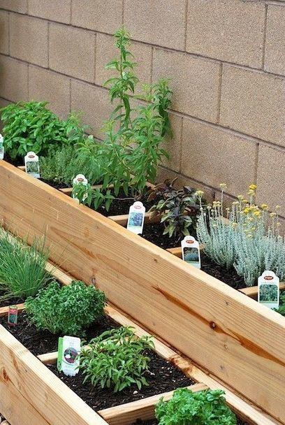 Jardiner en ville | Jardins urbains | Scoop.it