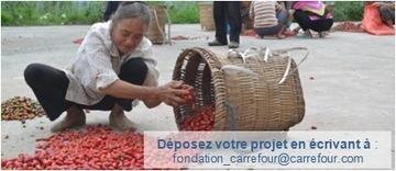 Carrefour Foundation > Fondation > Soumettre un projet   CIERA66   Scoop.it