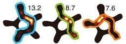 Brain works like a radio receiver | Energy Health | Scoop.it