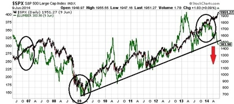 What The Collapse In Lumber Prices Means For Stocks | Timberland Investment | Scoop.it
