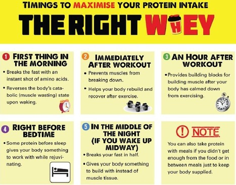 Whey Protein Benefits and Tips to Choose Right Whey protein at right time | Health & Digital Tech Magazine - 2016 | Scoop.it