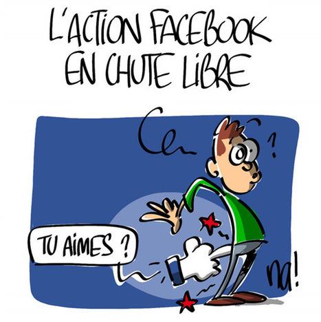 """L'action facebook en chute libre   """"Les Centristes humanistes""""   Scoop.it"""