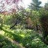 Les colocs du jardin
