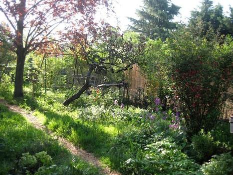 Les colocs du jardin | Mes passions natures | Scoop.it