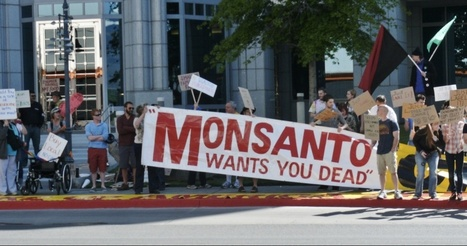 Monsanto Set to Sue Vermont for Requiring GMO Labeling | Food issues | Scoop.it