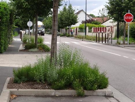 Les beaux trottoirs de Maurecourt | Les colocs du jardin | Scoop.it