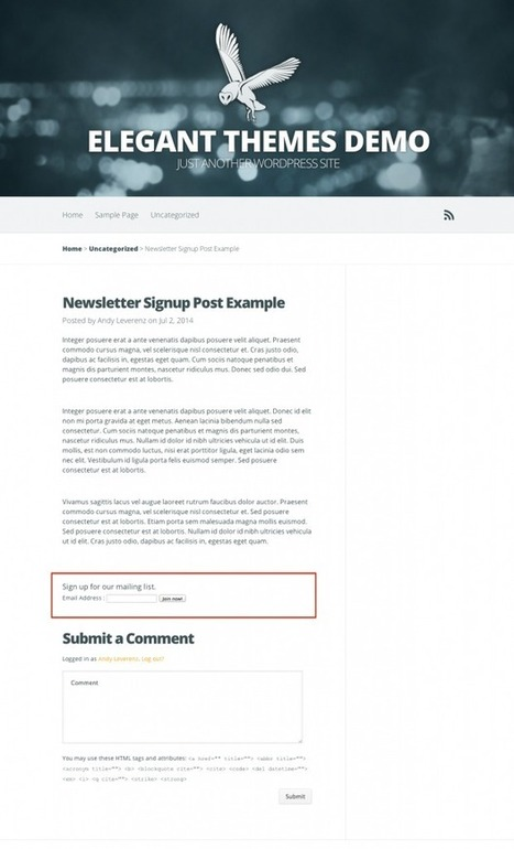 How To Add A Newsletter Signup Widget To The End Of Your WordPress Blog Posts | Elegant Themes Blog | Keep Up With The Web | Scoop.it