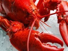 Nova Scotia Urges Fair Access for Lobster Exports | Nova Scotia Fishing | Scoop.it