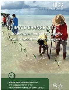 Changement climatique : Publication du Rapport du GIEC « impacts, adaptation et vulnérabilité » - Ministère du Développement durable | Entreprises et développement durable | Scoop.it
